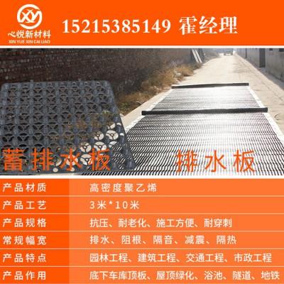 心悦 长沙塑料凹凸排水板20高复合排水板/优惠多多