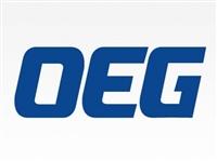 OEG代理商 王利继电器代理商