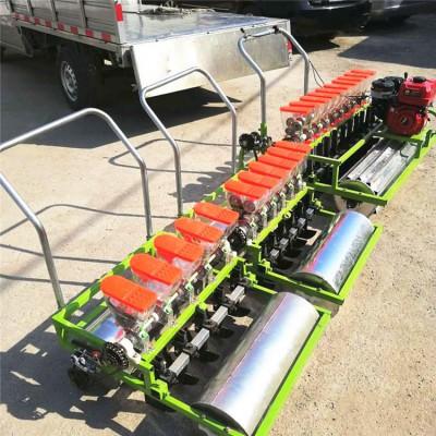 大葱芹菜播种机 手推自走式精播机 稻谷汽油播种机
