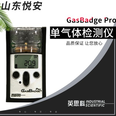 贵州省英思科GB60单一氧气气体检测仪现货