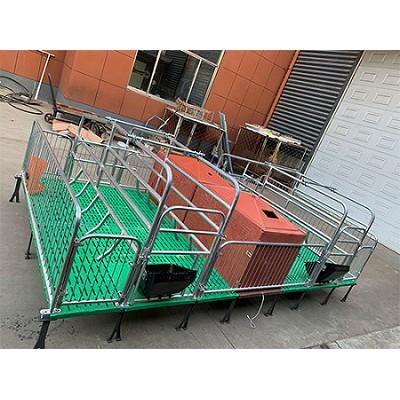 湖南长沙双体母猪产床「志航机械」铸铁母猪产床行业制造