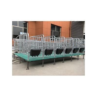 福建福州复合板定位栏「志航机械」母猪产床行业制造