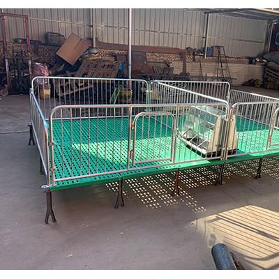 重庆小猪保育床「志航机械」仔猪保育床出售