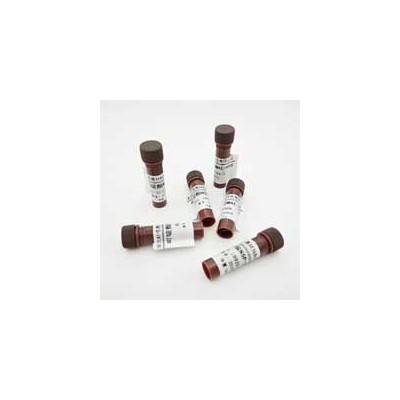 吖啶酯与其它化学发光试剂的区别