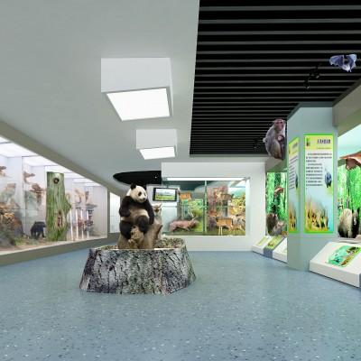 浉河规划馆设计  浉河企业文化馆设计施工一体化