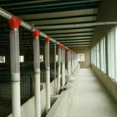 四川养猪设备生产企业/泊头开元畜牧厂价销售猪场现代化喂料系统
