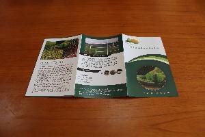 广州白云区折页海报 单张彩页 三折页设计印刷佳旺汇定制报价