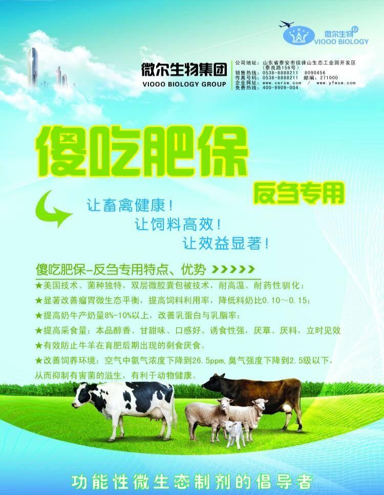 教你一招解决育肥牛 羊不吃料长得慢,减少过料提高利用率
